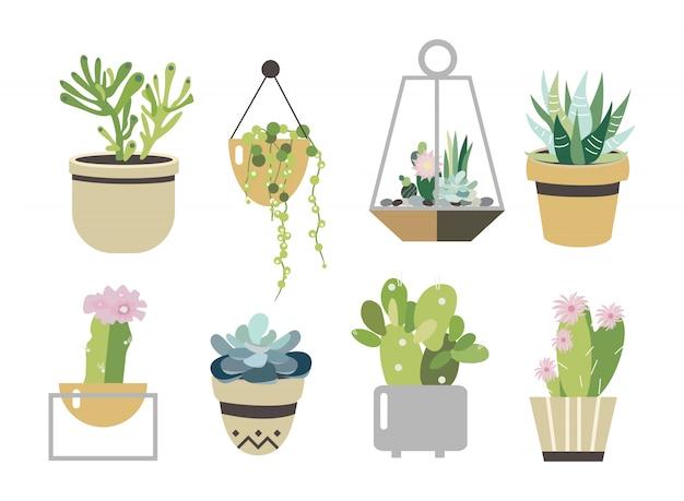 多肉植物とサボテンのセット。フラットスタイルのコレクション図。