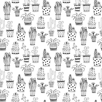 Succulent and cactus pattern. doodle flowers in pots background.