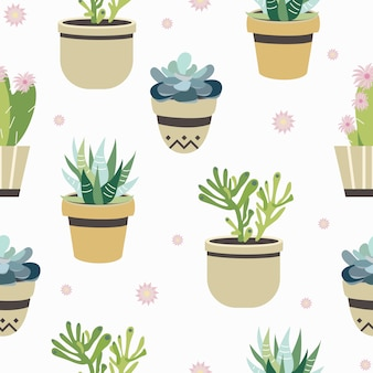 Succulent and cactus seamless pattern. flat style background colorful   illustration.