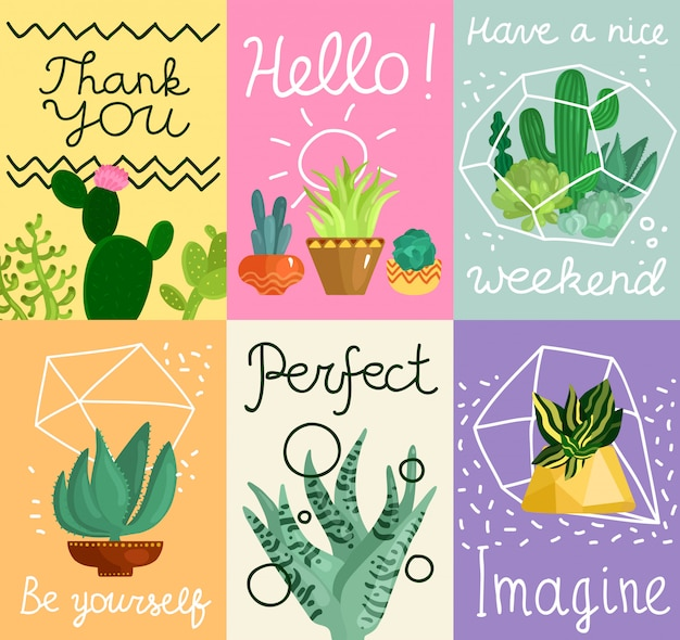 Succulent cards set