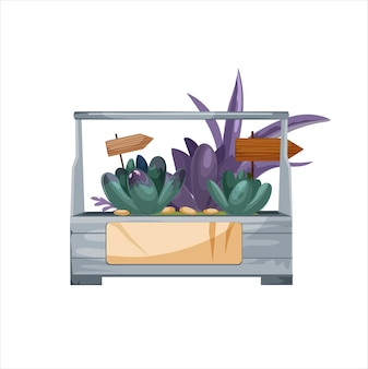 고립 된 즙이 많은 florarium