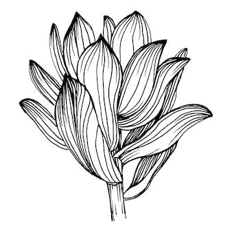 즙이 많은 꽃, 조각 빈티지 일러스트
