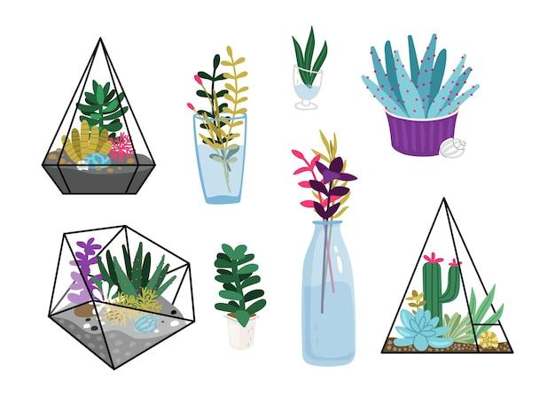 多肉植物。ガラス瓶のポットに庭の花、テラリウム、花の花束。季節の家の緑のベクトルセット