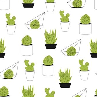 벽지, 포장, 포장 및 배경 흰색 배경에 다육 식물과 선인장 만화 완벽 한 패턴입니다.