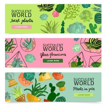 Set di banner di piante grasse