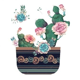 다육 식물. 선인장 손으로 그린에 고립 된 화이트