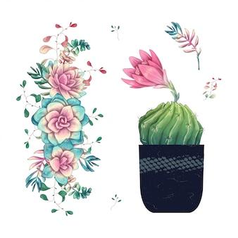 다육 식물. 흰색 배경에 그려진 선인장 손