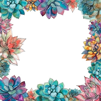 Succulents  frame