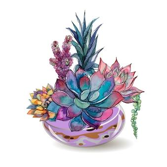 Succulents in glass aquariums. watercolor.