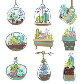 Succulents icons set