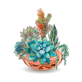 유리 수족관의 다육 식물. 수채화.