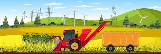 Сбор урожая сахарного тростника в дневное время