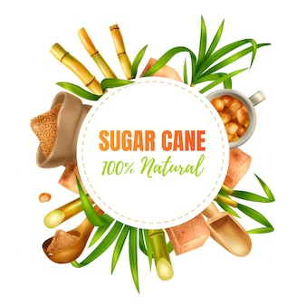 Sugar cane realistic design concept with manufacture and production symbols illustration