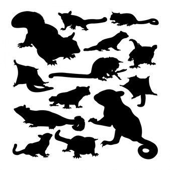 Sugar glider animal silhouettes.