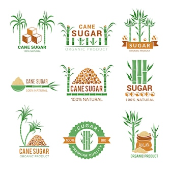 Sugarcane manufacturing. sweets plants production farm industry leaf  badges or labels with place for your text.