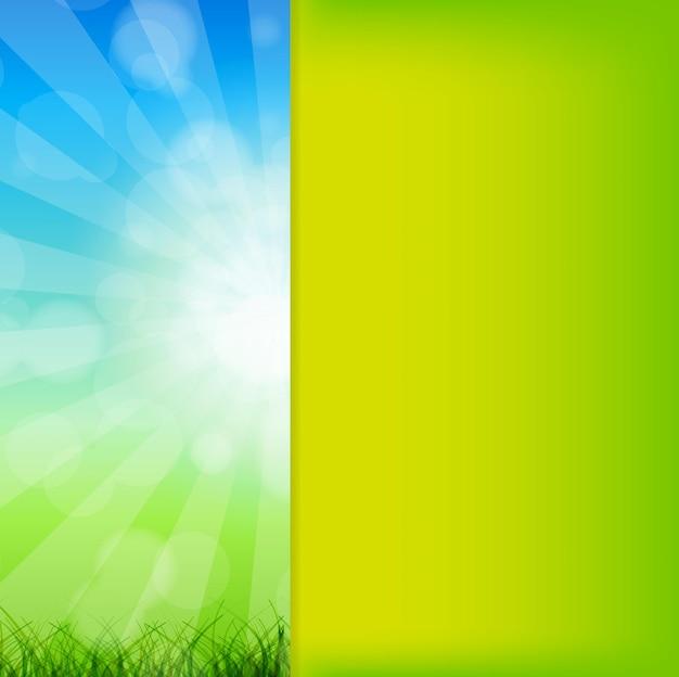 太陽に対する草とカモミールと夏の抽象的な背景