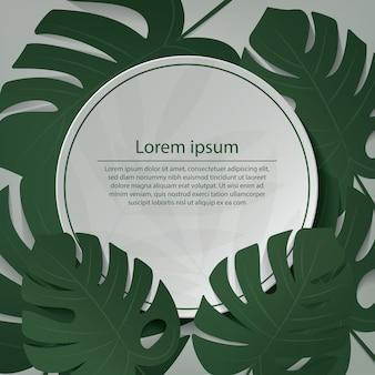 Летний фон листья монстеры на фоне зеленой стены