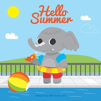 Summer background with elephant in the pool