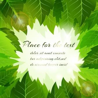 Sfondo estivo con una cornice di foglie verdi fresche che circondano un copyspace centrale