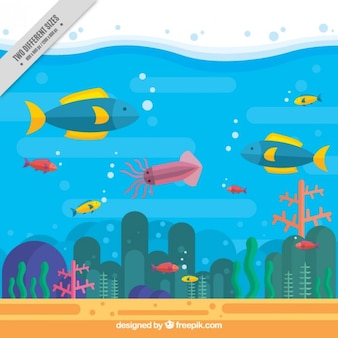 평면 디자인에 해양 야생 동물과 여름 배경