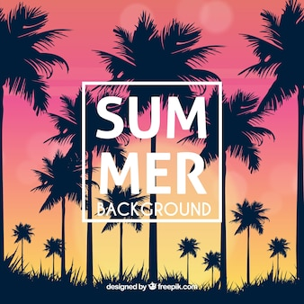 Summer background with palm tree silhouettes