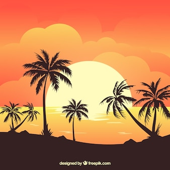 Летний фон с закатом и пальмами