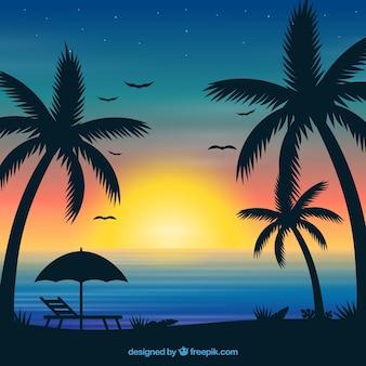 석양과 야자수와 여름 배경