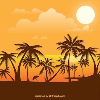 Priorità bassa di estate con il tramonto e palme Vettore gratuito