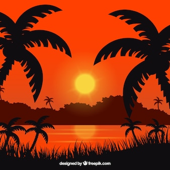 Summer background with sunset and palm trees