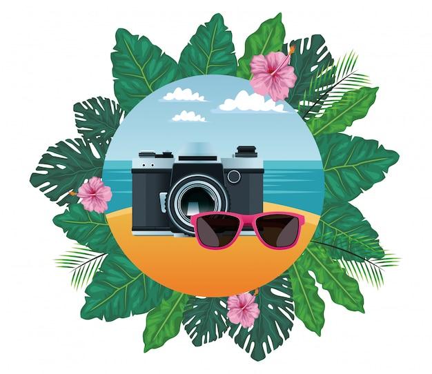 Summer beach and vacation cartoon