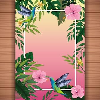 Summer blank card