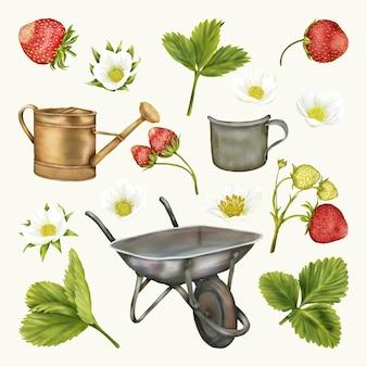 夏の自由奔放に生きる古い手押し車のカップと漏斗のイチゴの花の葉