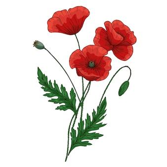 赤いポピーの花と夏の花束。 papaver。緑の茎と葉。