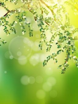 Летняя ветвь со свежими зелеными листьями.