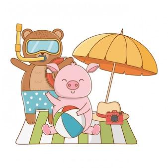 Summer and cute animals cartoons