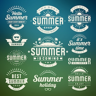 Summer design elements and symbols typographic labels and badges