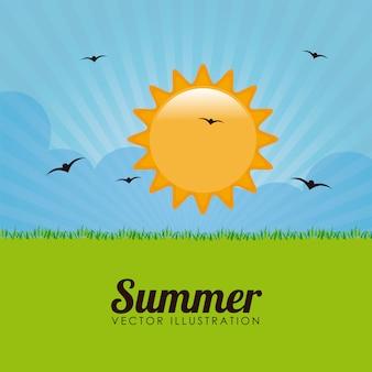 Summer design over landscape background vector illustration