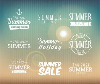 Summer design over pattern background vector illustration