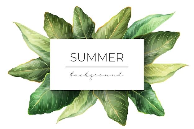 夏のエコエキゾチックなデザインイラスト