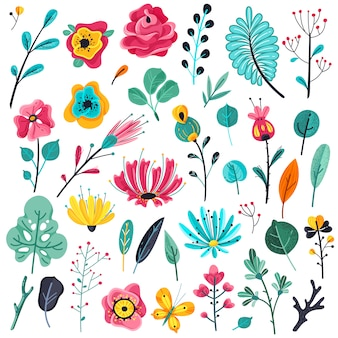 Summer flat flowers. floral garden flowering plants, nature floral elements. spring botanical set
