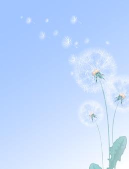 夏の花のイラスト白いタンポポと空飛ぶ綿毛。