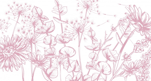Summer flowers line art