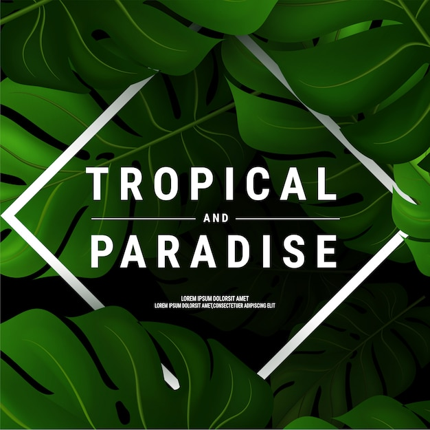 Summer flyer illustration with typographic on nature background with palm leaves