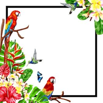 Summer frame background