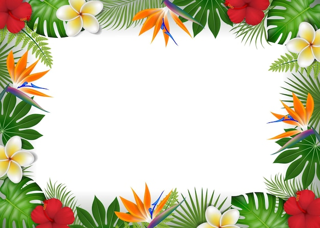 Summer frame with tropical leaves and exotic flowers