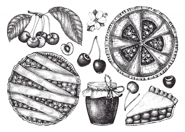 Summer fruits and berries - cherry sketches collection. vintage illustrations of cherry branch, berries, baking cake. hand drawn summer food elements in engraved style.