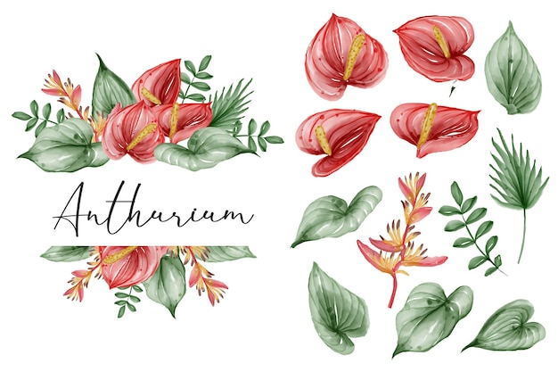 Summer greenery tropical leaf and anthurium isolated clip art watercolor