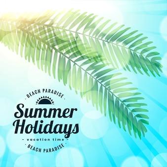 Summer holidays beach paradise leaves background