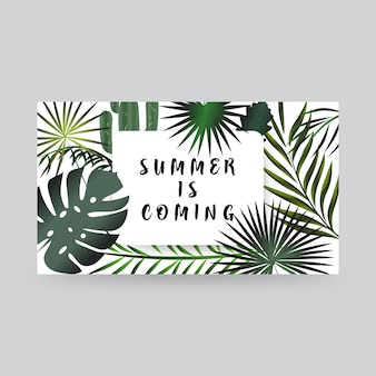 Summer is coming. frame with floral theme