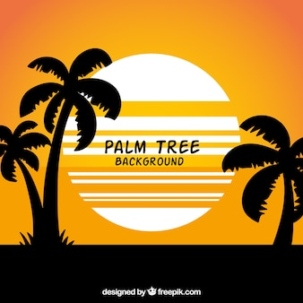 Summer landscape background with silhouettes of palm trees